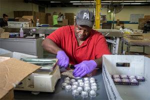 Baker Employees Prepare Packaging